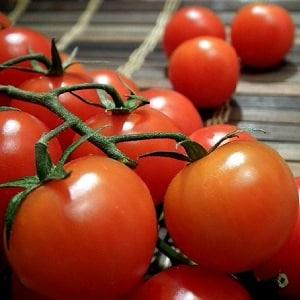 """Обзор томата """"Огородник"""": преимущества и недостатки, условия выращивания и характеристики готового урожая"""