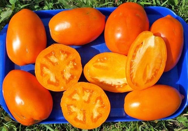 """Ассортимент томатов """"Кенигсберг"""": описание разновидностей и советы по эффективному выращиванию"""