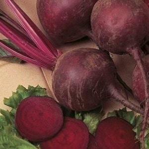 """Сладкая и полная витаминов свекла """"Мулатка"""": как вырастить богатый урожай и куда его применять"""