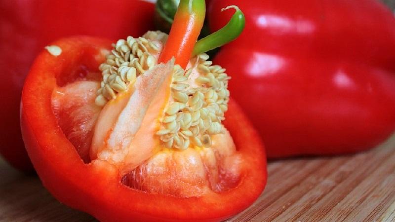 """Сладкий и сочный сорт перца """"Толстячок"""" для теплиц и открытого грунта"""
