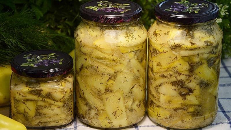 Оригинальные зимние закуски своими руками: как солить кабачки - 12 самых вкусных рецептов