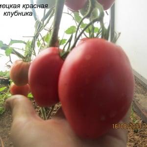 Сорт с аппетитным названием - томат {amp}quot;Клубничка{amp}quot;: выращиваем правильно и собираем до 5 кг с куста