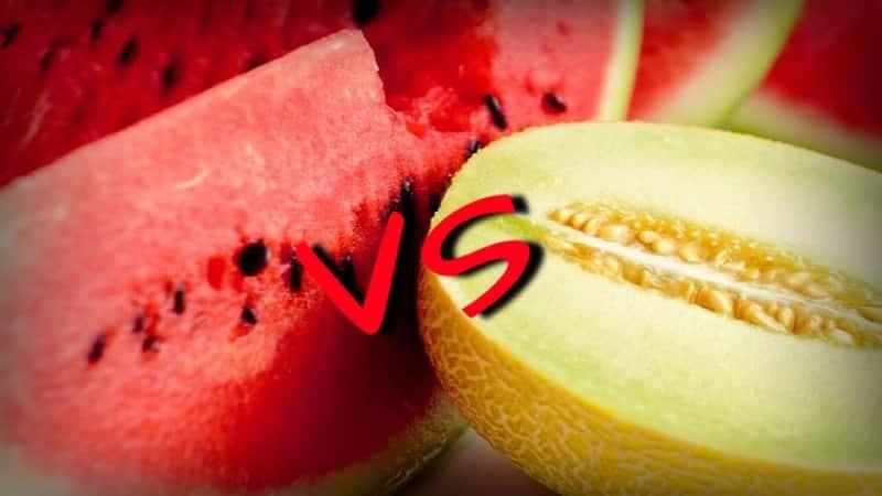 Что полезнее - арбуз или дыня: сравнение составов и свойств