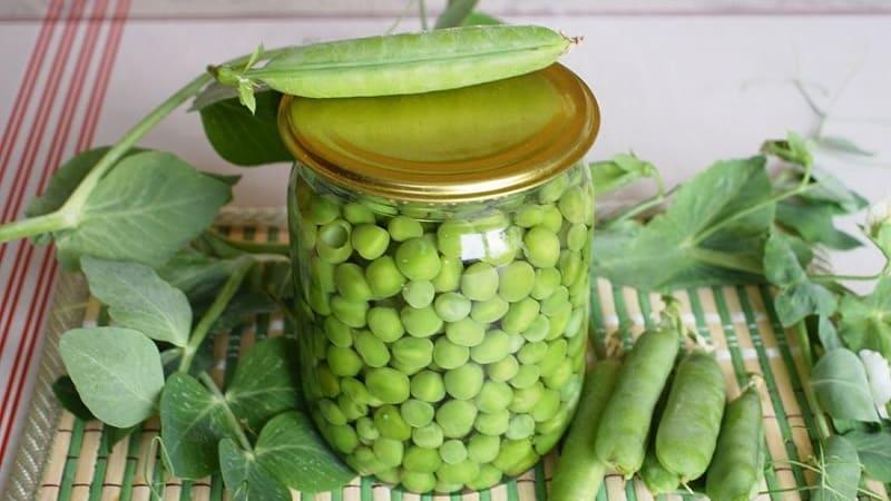 Как замариновать зеленый горошек на зиму в домашних условиях: лучшие рецепты и рекомендации по хранению заготовок