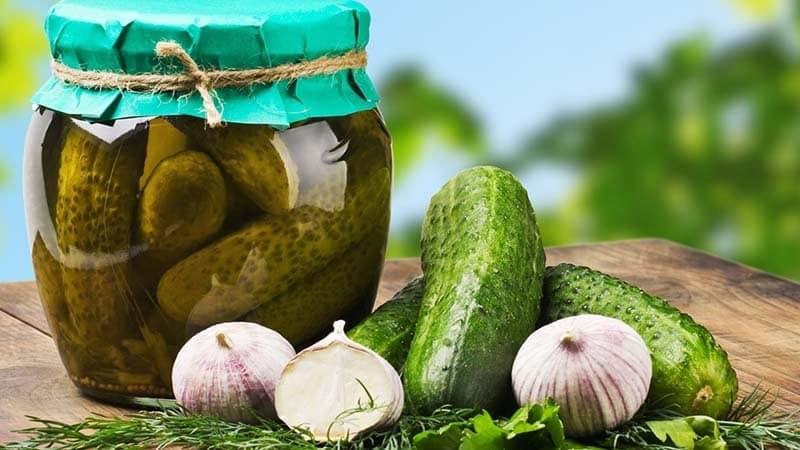 Можно ли консервировать горькие огурцы: влияние на вкус и рецепты закруток