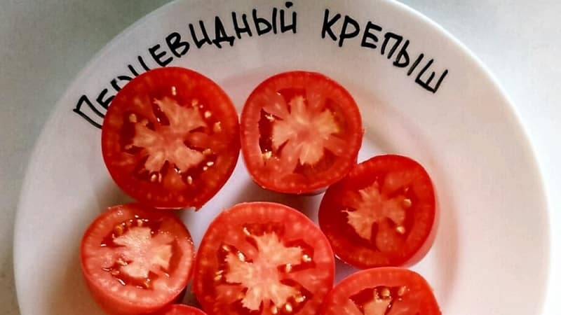 """Попробуйте этот необычный сорт, который не оставит вас равнодушными - томат """"Перцевидный крепыш"""""""