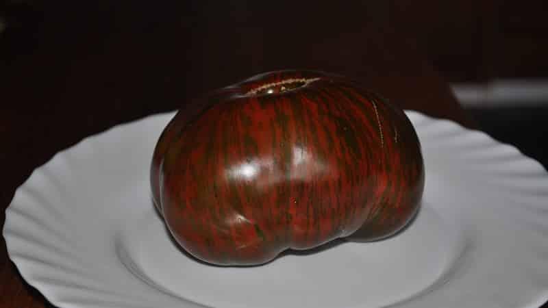 """Сорт с необычным окрасом, неповторимым вкусом и аппетитным названием - томат """"Полосатый шоколад"""""""