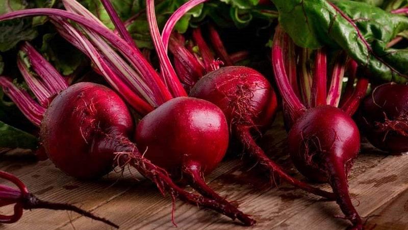Семена свеклы кардинал