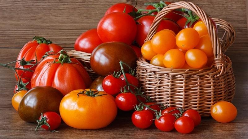 Узнаем, как хранить помидоры в домашних условиях и наслаждаемся свежими плодами до самой зимы