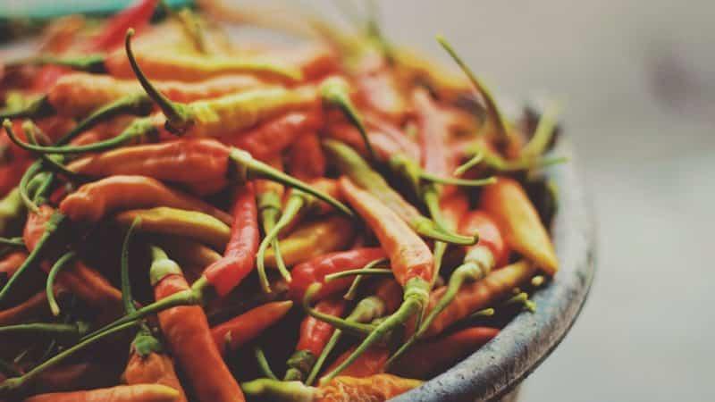 Как приготовить маринованный горький перец на зиму без стерилизации: самые простые и вкусные рецепты