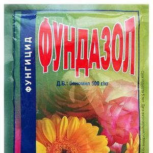 """Сорт с дынным ароматом и высокой урожайностью - тыква """"Россиянка"""" и секреты её выращивания"""