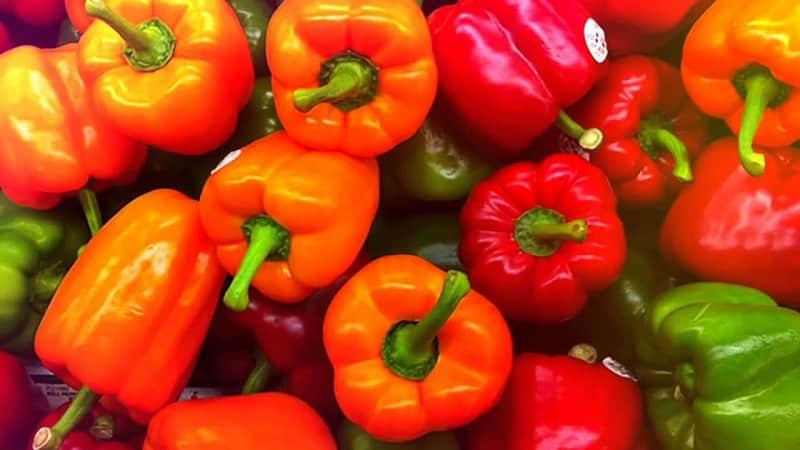 Как сохранить перцы на зиму свежими