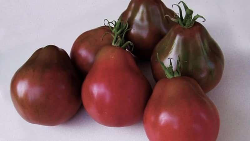 """Идеальный для консервации и некапризный в уходе томат """"Японский трюфель"""": отзывы, фото и секреты выращивания"""