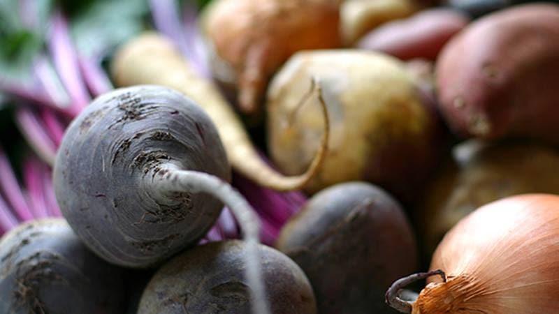 Лучшие способы хранить свеклу: выбираем подходящий и защищаем урожай от порчи