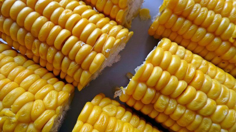 Можно ли есть сырую кукурузу: польза и вред свежего овоща, возможные противопоказания