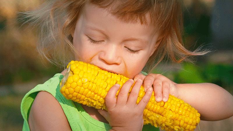 Можно ли при похудении есть вареную кукурузу: калорийность, вред и польза злака