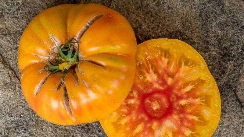 """Невероятно сладкий и удивительно красивый томат """"Медовый салют"""""""