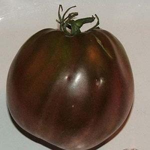"""Полный обзор томата """"Чёрное сердце Бреда"""": характеристики и описание сорта, его преимущества и недостатки"""