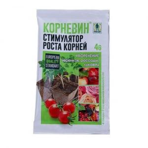Сорт, который одинаково хорош и для теплицы, и для открытого грунта - томат {amp}quot;Настенька{amp}quot; и методика его выращивания