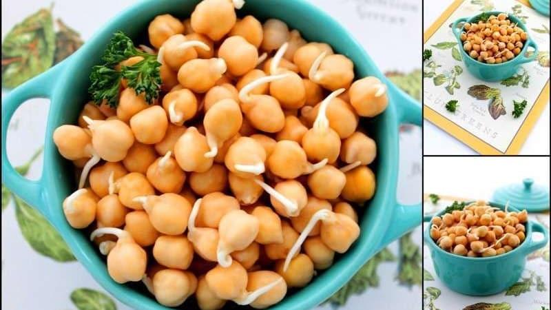 Сытный и вкусный кладезь витаминов: горох нут, секреты его применения в кулинарии, косметологии и народной медицине