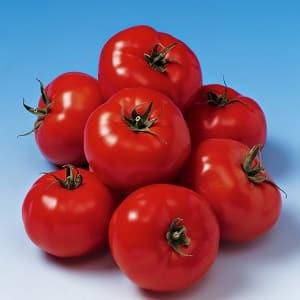 """Поразит урожайностью и вкусом - томат """"Белле f1"""" и секреты агротехники от огородников со стажем"""