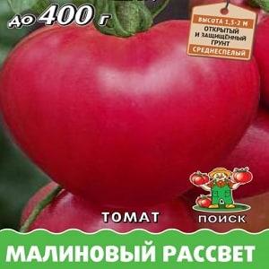 """Салатный сорт с мясистой мякотью - томат """"Малиновый рассвет"""""""