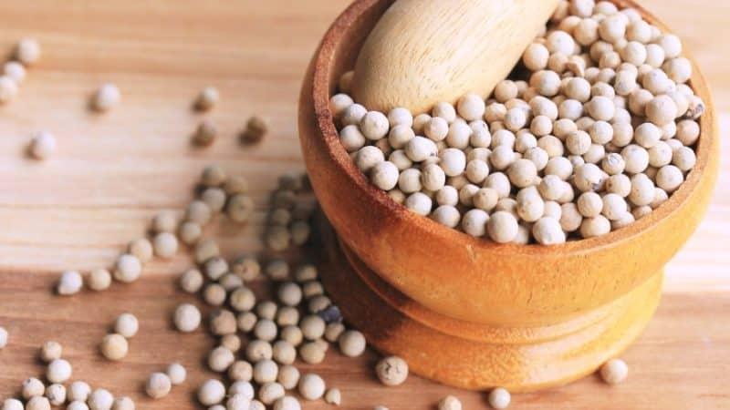 Что такое белый перец и как он применяется в кулинарии, косметологии и народной медицине