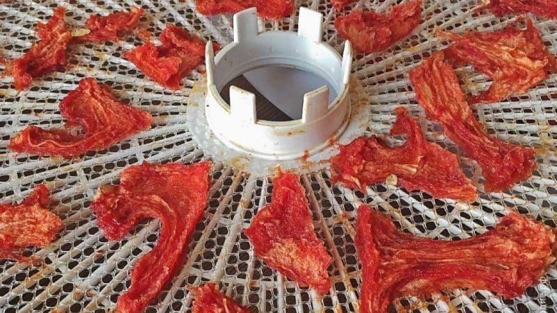 Пошаговая инструкция: как сушить арбуз в электросушилке и хранить готовый продукт