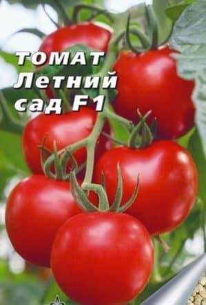 """Обзор раннего гибридного томата """"Летний сад f1"""": отзывы дачников и инструкция по выращиванию гибрида"""