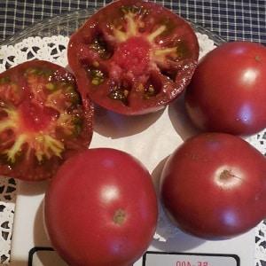 Любимый дачниками томат {amp}quot;Микадо{amp}quot; с богатой палитрой подвидов и крепким иммунитетом - выращиваем сами без хлопот