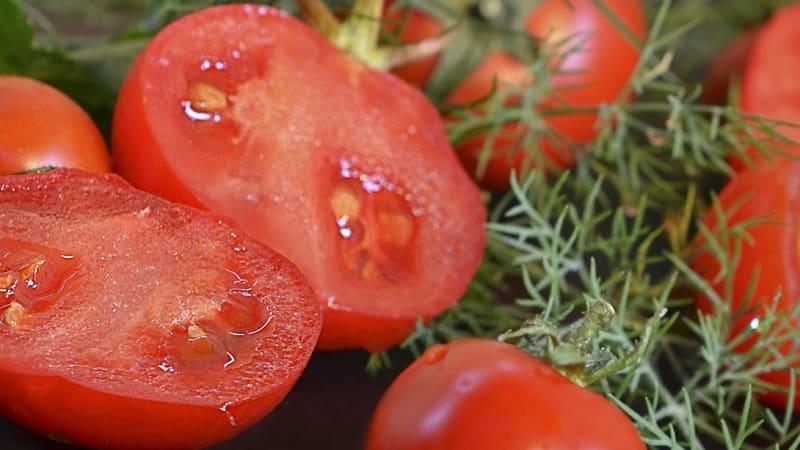 """Неприхотливый сорт, требующий минимальной заботы – томат """"Японский карлик"""""""