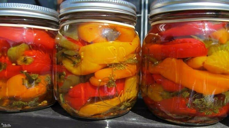 Самые вкусные и простые рецепты маринованного перца на зиму без стерилизации банок