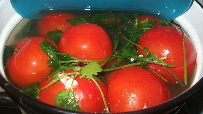 Топ-10 лучших рецептов, как засолить помидоры в бочке, особенности подготовки тары и хранения готовых солений
