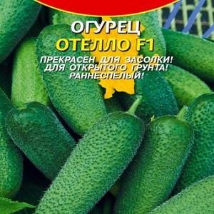"""Проверенный временем и любимый огородниками огурец """"Отелло"""" от голландских селекционеров"""