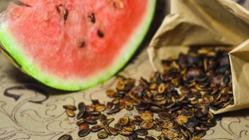 Как приготовить жареные арбузные семечки и чем они полезны