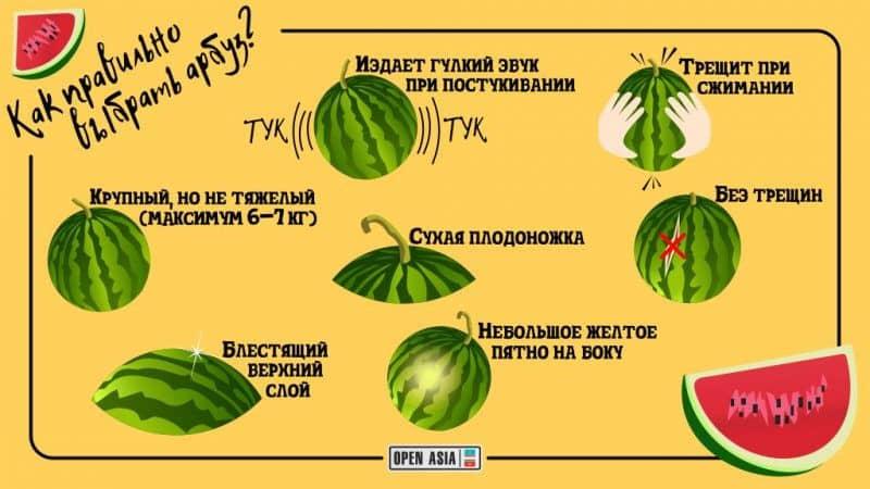 Как выбрать спелый и сладкий арбуз: на что обращать внимание при покупке и выборе плода на грядке
