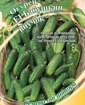 """Огурец-гибрид """"Бабушкин внучок f1"""": описание и особенности агротехники"""