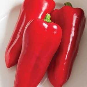 """Почему стоит выращивать гибридный перец """"Атлант"""" и чем он может вас удивить"""