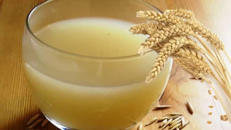 Лечение овсом: свойства, противопоказания, как заваривать