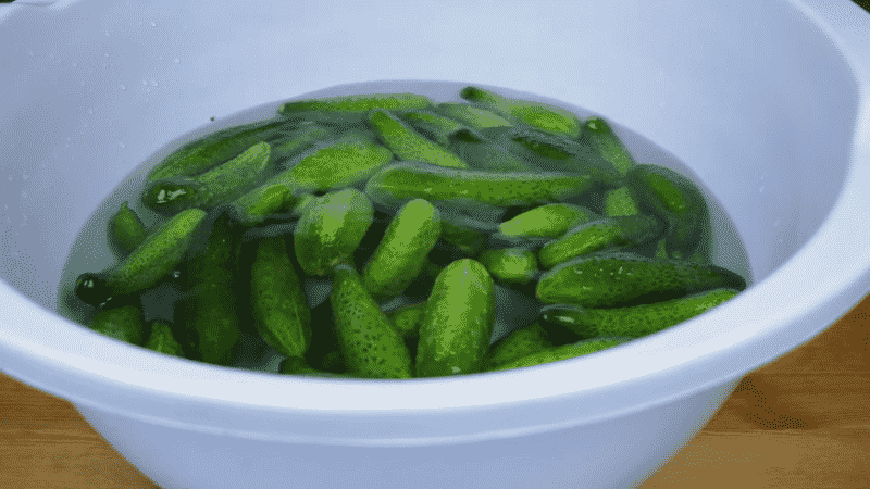 6 самых вкусных рецептов соленых огурцов в кастрюле