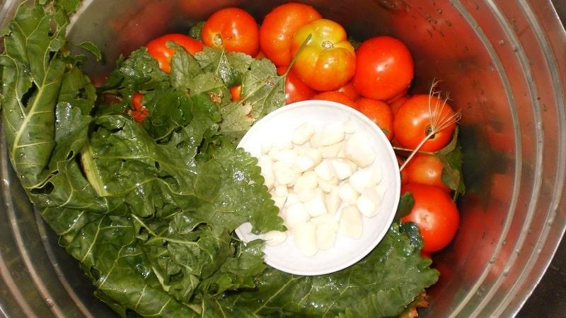 Самые вкусные и простые рецепты засолки помидоров в ведре: делаем отменные заготовки на зиму