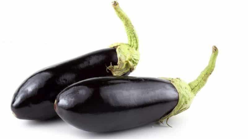 """Обзор сорта баклажанов """"Черный принц"""" и инструкция по его выращиванию"""