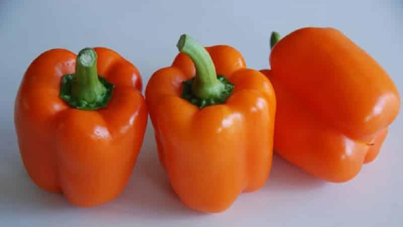 """Сорт перца """"Биг мама"""" с сочными сладкими плодами апельсинового цвета: выращиваем без труда на своем участке"""