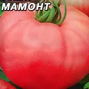 """Достоинства и недостатки томата """"Мамонт"""""""