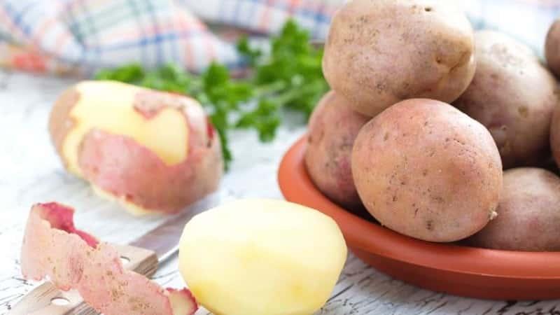 Описание сорта картофели Романо: особенности выращивания с фото