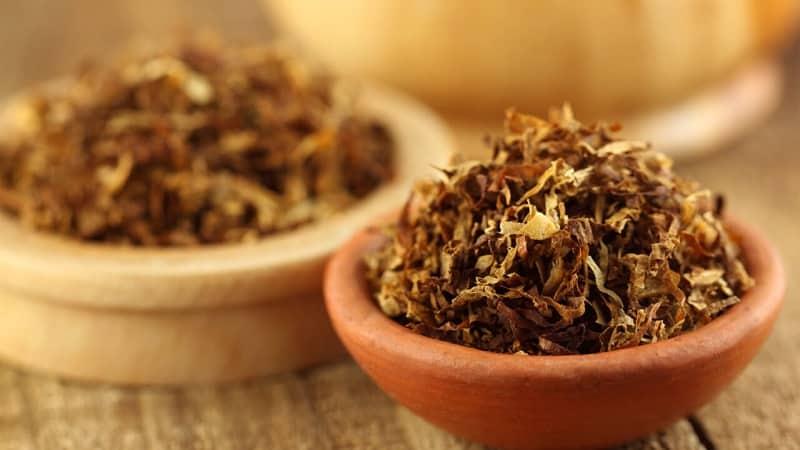 Самые надежные способы хранения табака в домашних условиях