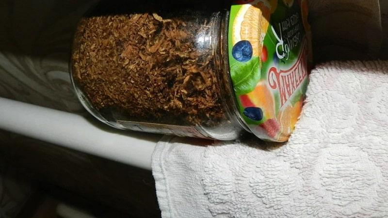 Как произвести ферментацию табака в домашних условиях: лучшие способы