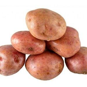 """Устойчивый к заболеваниям столовый сорт картофеля """"Кураж"""" из Голландии"""