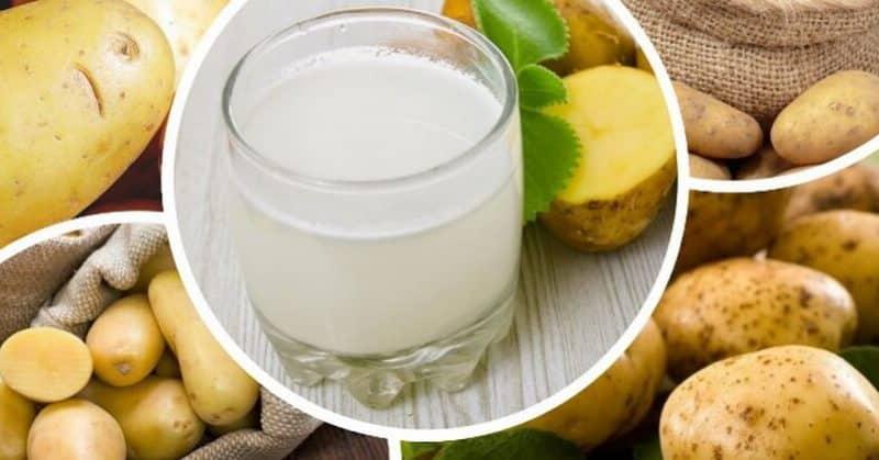 Можно ли пить картофельный сок при гастрите и других заболеваниях ЖКТ
