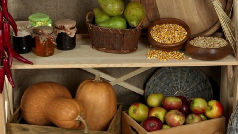 Как хранить тыкву на зиму в погребе: создаем благоприятные условия, во избежание порчи овоща
